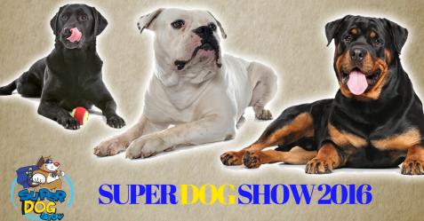Super dog show Fiera di Roma roma presso commercity