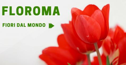 floroma commercity